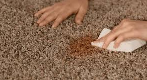How to properly remove carpet water stains?